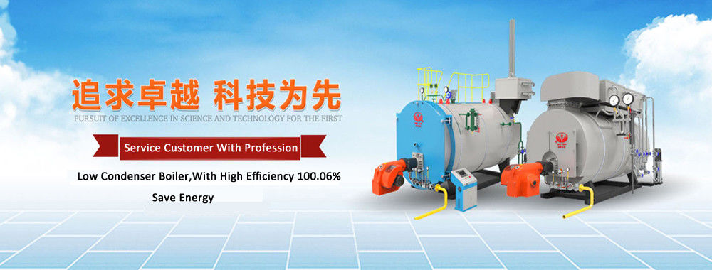China best Biomass Fired Steam Boiler on sales