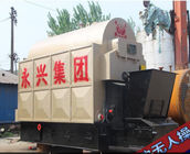 DZL Chain Grate Stoker Coal Fired Steam Boiler For Food Factory 6 TON